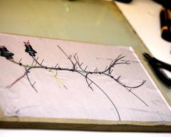 Critere SPRL - Galerie